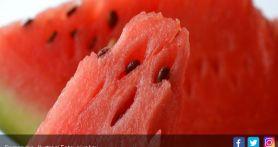 Sederet Manfaat Buah Semangka, untuk Jaga Kesehatan Jantung Hingga Kecantikan Oke Banget