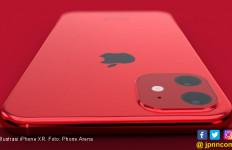 Apple Bakal Luncurkan Penerus iPhone XR dengan Baterai Lebih Besar - JPNN.com