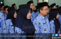 Ombudsman Dukung PNS Kerja di Rumah? - JPNN.com