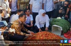 Toko Tani Indonesia Respons Cepat Stabilkan Harga Cabai - JPNN.com