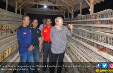 Warga Binaan di Lapas Tuban Diajarkan Budi Daya Lele dan Ayam - JPNN.com