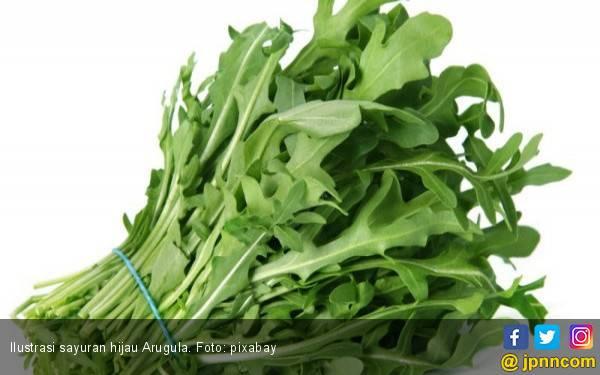 Ketahuilah, 7 Manfaat Mengonsumsi Sayuran Hijau untuk Kesehatan - JPNN.com