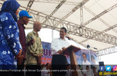 Talas Indonesia Diminati Warga Jepang, Sulsel Tingkatkan Produksi - JPNN.com