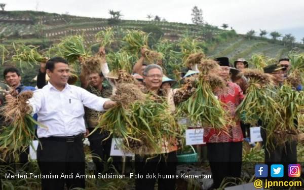 Ketua ABMI Sebut Mentan Amran Sukses Membalikan Impor menjadi Ekspor Bawang Merah - JPNN.com