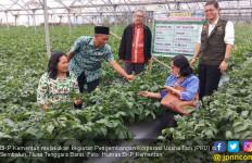 Pengembangan Korporasi Usaha Tani BKP Kementan Bangkitkan Semangat Petani Sembalun - JPNN.com