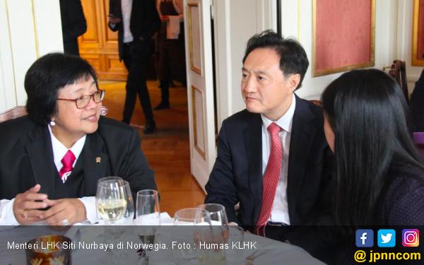 Menteri Siti Ungkap Rahasia Indonesia Bisa Tekan Deforestasi - JPNN.com