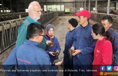 FFI Kirim Empat Peternak Sapi Indonesia untuk Studi Banding ke Belanda - JPNN.com