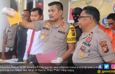 Polisi Tangkap Satu Pelaku Pembakaran Lahan di Dumai - JPNN.com