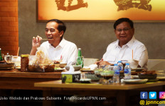 Soal Prabowo Bertemu Jokowi sudah Klir, tetapi Masih Perlu Jelaskan ke Pendukung - JPNN.com