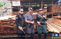 Bersama Polres Nunukan, KLHK Sita Ribuan Potong Kayu Ilegal - JPNN.com