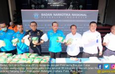 BNN, Polri, dan Bea Cukai Gagalkan Penyelundupan 38 Kg Sabu-Sabu - JPNN.com