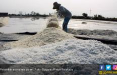 Ini Penyebab Garam Produksi Lokal Belum Memenuhi Kebutuhan Industri - JPNN.com