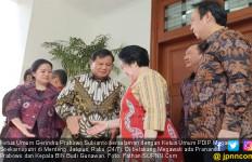 Prabowo Bertemu Bu Mega, Anak Buah Surya Paloh Singgung Politik KLBK - JPNN.com