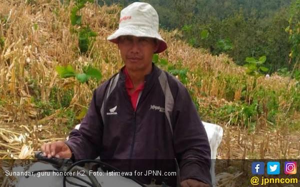 Kisah Pak Guru Honorer K2, Usai Mengajar Cari Kayu Bakar, Istri Pergi Ogah Kembali - JPNN.com
