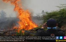 KLHK Tetapkan UB Sebagai Tersangka Karhutla 274 Hektare di Kubu Raya Kalbar - JPNN.com