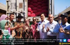 Produk Bawang Merah Probolinggo Serbu Thailand - JPNN.com