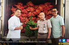 Pisang Indonesia Masuk Pasar Malaysia - JPNN.com