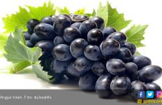 Kaya Antioksidan, Anggur Hitam Cegah Kanker dan Diabetes - JPNN.com