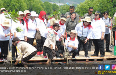 Keliling Indonesia, Iriana Jokowi Sudah Tanam 170 Ribu Pohon Mangrove - JPNN.com