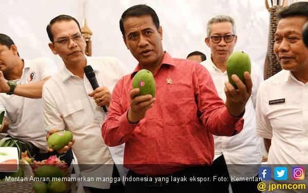 Dorong Ekspor Mangga, Balitbangtan Rekomendasikan Teknologi Hot Water Treatment - JPNN.com
