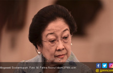 Peristiwa Politik 2019: 5 Ketum Parpol tak Tergantikan, Ada yang Awalnya Panas - JPNN.com