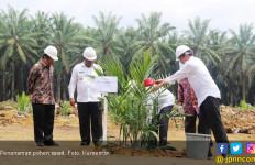 Jepang Sulap Limbah Sawit Indonesia Jadi Energi Terbarukan - JPNN.com