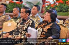 CIFOR Apresiasi Kebijakan Kehutanan Indonesia - JPNN.com