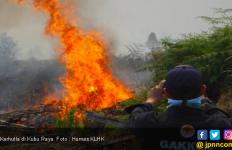 Pelaku Pembakaran 274 Hektar Lahan Terancam Penjara Maksimal 10 Tahun - JPNN.com