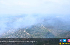 Letjen Joni Apresiasi Prajurit TNI dan Polri Dalam Operasi Pemadaman Karhutla di Riau - JPNN.com