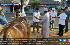Danlanal Banyuwangi Serahkan Hewan Kurban ke Pengurus Masjid - JPNN.com