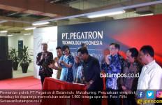 Kepri Peringkat Kelima Penerima Investasi Asing Terbanyak di Indonesia - JPNN.com