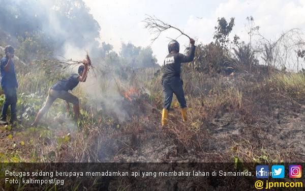 Sehari, Dua Kali Kebakaran Lahan di Samarinda, 17 Hektare sudah Ludes Terbakar - JPNN.com