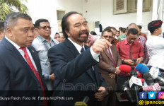Megawati Ogah Salaman, Surya Paloh Bilang Begini - JPNN.com