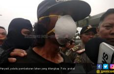 Gubernur Interogasi Pelaku Pembakar Lahan, Kantongi Nama Penting - JPNN.com
