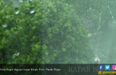 Siang Ini Kota Bogor Diguyur Hujan Deras - JPNN.com