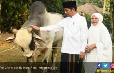 Tak Mau Merembet ke Mana-Mana, Jokowi Tolak Keinginan PDIP - JPNN.com