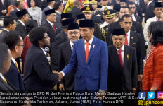 Senator Papua Barat Dukung Rencana Presiden Jokowi - JPNN.com