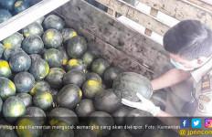 Sertifikasi Ekspor Pertanian Asal Sulut Meningkat Tajam - JPNN.com