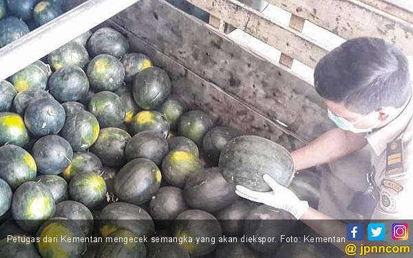 Sektor Pertanian Ubah Tradisi Jeratan Impor Jadi Ekspor - JPNN.com