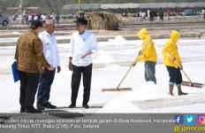 Kunjungi NTT, Jokowi Ingin Pastikan Tambak Garam Sudah Berproduksi - JPNN.com