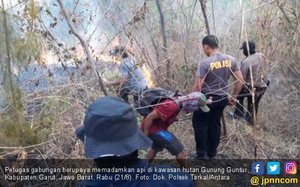 Hutan di Gunung Guntur Terbakar, Polisi Selidiki Penyebabnya - JPNN.com