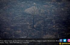 Tujuh Negara Bersepakat Melindungi Amazon - JPNN.com