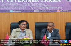 Kementan Tingkatkan Ekspor Produk Peternakan ke Timor Leste - JPNN.com