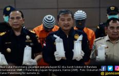Bea Cukai Gagalkan Penyelundupan Puluhan Ribu Baby Lobster - JPNN.com