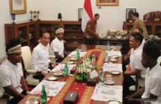 Presiden Jokowi Terima Tamu Penting di Istana Merdeka - JPNN.com