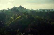 Jokowi Akan Serahkan 2 SK Hutan Adat ke Masyarakat Landak - JPNN.com