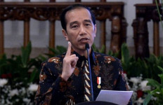 Jokowi Belum Mengerti Materi Revisi UU KPK - JPNN.com