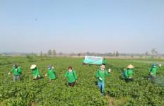 Polri: Pelaku Pemalsuan Pestisida Dapat Dikenakan Pasal Berlapis - JPNN.com
