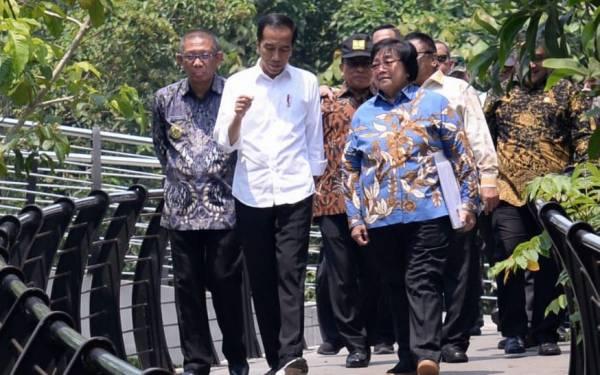 Presiden Serahkan SK TORA Perdana untuk Masyarakat di Pulau Kalimantan - JPNN.com