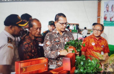 Komoditi Pertanian Indonesia Semakin Jaya - JPNN.com
